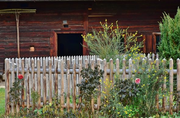How can you care for your garden all year round?